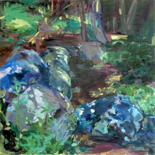 rocksinthewoods50x501979