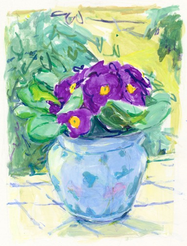 purple-primrose-7-75_x5-75_z