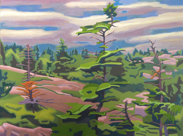 1- View of Cadillac Mountain (MT Desert Island)-2016-oil on canvas- 30x40